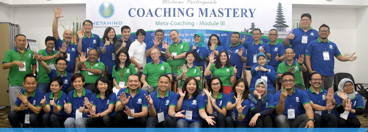 Welcome to METAMIND Training Coaching Institute